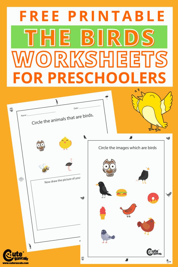Bird-themed free printable worksheets for preschoolers.