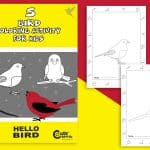 Simple! 5 Bird Coloring Pages for a Relaxing Time