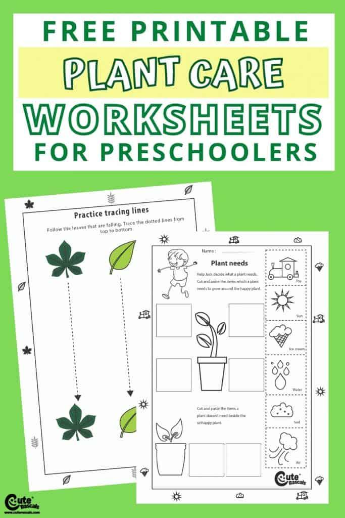 Free printable plant worksheets for preschoolers