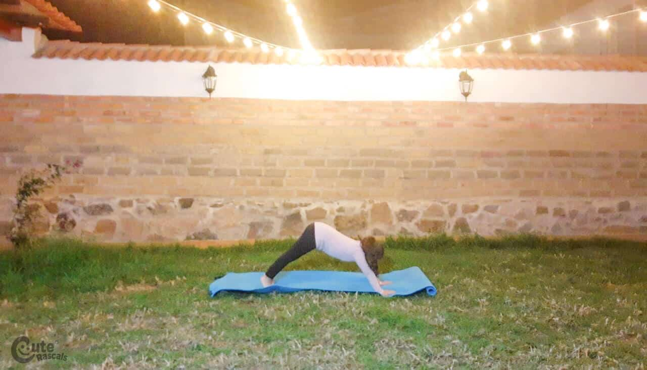 place the hands and legs on the mat, face to the ground, inhale and exhale slowly.
